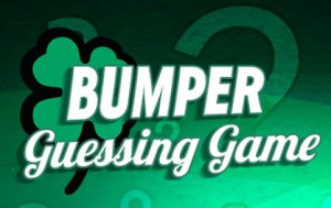 Bumper Guessing Game